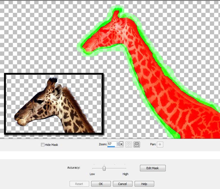 Lightbox video web gallery creator 2.1.4