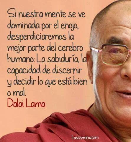 Enojo... sabiduría...                                                                                                                                                                                 Más