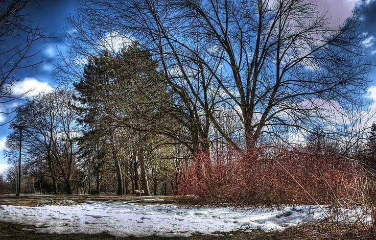 Snow is melting, University of Waterloo