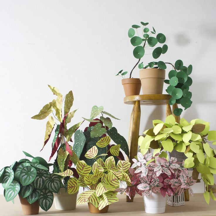 DIY: Pretty and Carefree Paper Plants: Gardenista ....paper plants