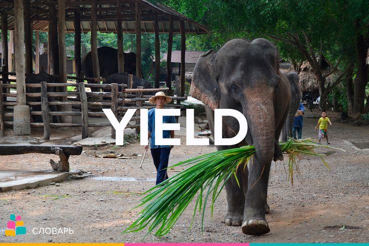 Yield |jiːld| — доход, доходность, урожай, давать, приносить, уступать, поддаваться  To yield to smb.'s demands — уступать чьим-л. требованиям  To yield a point — уступить, сдаться в каком-л. вопросе  Not to yield an inch — не уступить ни на йоту  To yield no results — не давать никаких результатов  To yield a profit — приносить прибыль, давать доход  Good yield of wheat — хороший урожай пшеницы   Примеры:  The disease yields to treatment / Эта болезнь поддаётся лечению.  The apple trees…