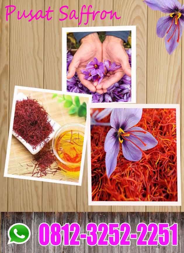 Grosir Wa 0812 3252 2251 Tsel Jual Putik Bunga Saffron Super Bandung Bogor Penjual Bunga Bunga Afghanistan