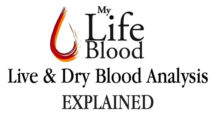 Live and Dry Blood Analysis - Explained - My Life Blood - Maria Waldock