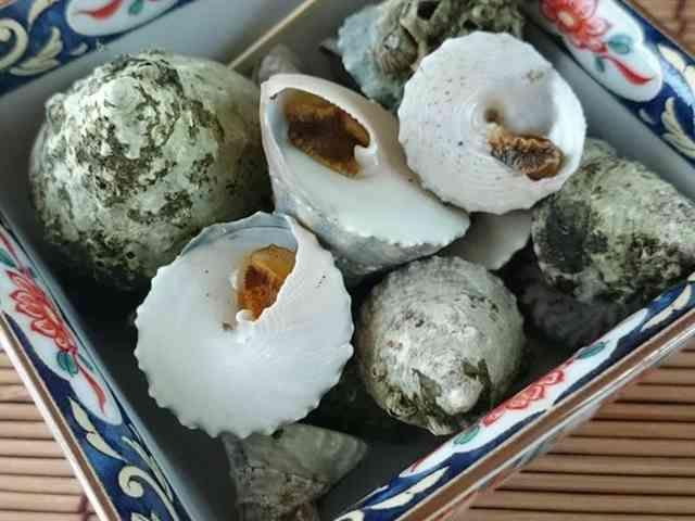 磯の巻き貝類の上手な塩ゆで☆(だまし煮)の画像