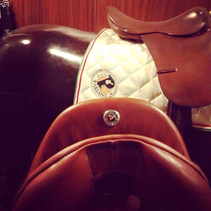 Selleria Pariani and SicurSell: the safest #saddle solution available. Unique #insurance now available!