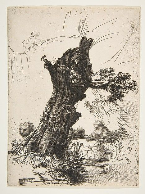 St. Jerome beside a Pollard Willow - Rembrandt (Rembrandt van Rijn) (Dutch, Leiden 1606–1669 Amsterdam) Date: 1648
