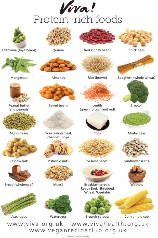 Protein-rich foods wallchart | Viva! Health ...