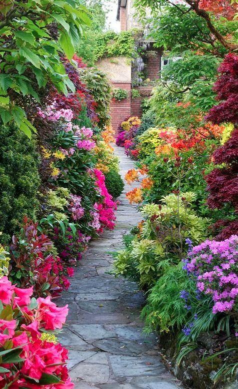 Gloriously colorful summer garden . . .
