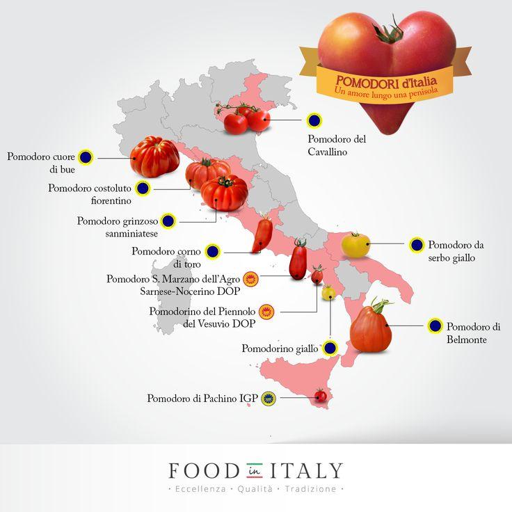 Ecco tutti i più gustosi e celebri #pomodori italiani che hanno segnato i piatti tipici della cucina tradizionale. http://goo.gl/MH0BBL