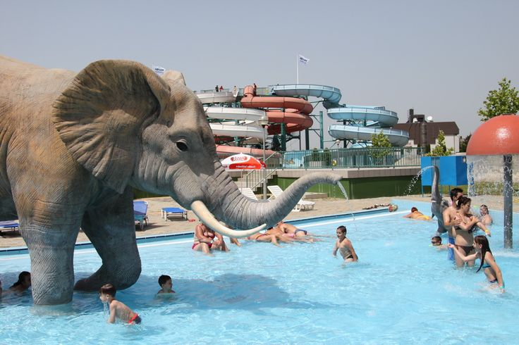 Aqua park in Hajdúszoboszló (pron. hai-do-so-boss-low), full of fun for the whole family #Hungary #spa #aquapark #pool #elephant #Europe