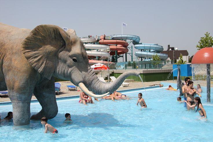 Aqua park in Hajdúszoboszló (pron. hai-do-so-boss-low), full of fun for the whole family #Hungary #spa #aquapark #pool #elephant #Europe