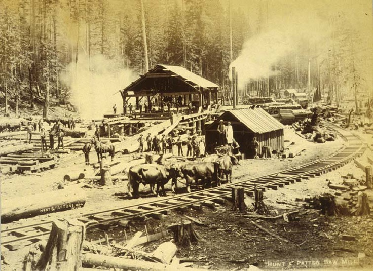 75 Best Sawmills Images On Pinterest Lumberjacks
