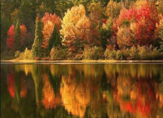 Fall activities-Φθινοπωρινές δραστηριότητες