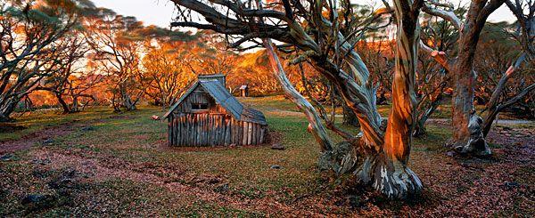 ALPINE HUT, VIC, Wallace's Hut