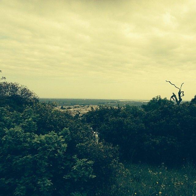 Cassano delle Murge, la Terra di Bari vista dall'Alta Murgia.. Spettacoli da godere. #murgia #altamurgia #parcoaltamurgia #cassanodellemurge #terradibari #bari #puglia