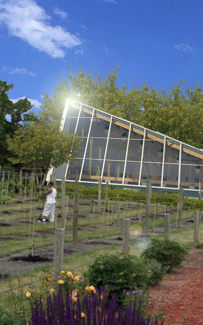 Turning A Vacant Cleveland House Into A Fancy Farm