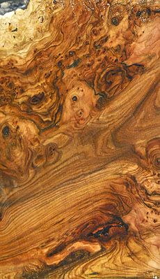 """""""...a couple of years ago you said you wanted a big walnut burl and last year I came across a real beaut.  Just your kind of thing, dark and twisted and completely impossible for anyone else to use, but in your hands it'll make the critics bleed.""""  --Laurie R. King, """"Folly."""""""