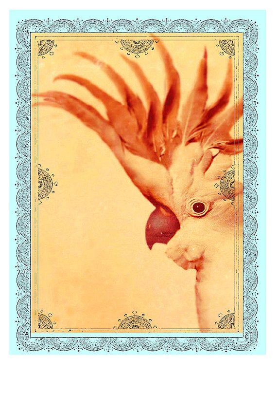 Cockatoo Print Yellow Orange Turquoise PRINT by Finandivy on Etsy
