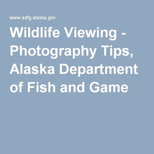 17 best images about alaska on pinterest cruise vacation for Department of fish and game