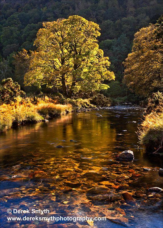 Autumn Highlights Glendalough Valley, Ireland