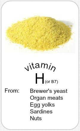 Vitamin H, more commonly known as biotin (or B7), is part of the water-soluble B complex group of vitamins, which cannot be stored in the body. All B vitamins help the body to convert food (carbohydrates) into fuel (glucose), which is used to produce energy. Biotin is also important for normal embryonic growth, making it a critical nutrient during pregnancy. See website for research and further information.