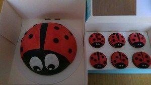 Lieveheersbeestjes cupcakes met bijpassende taart