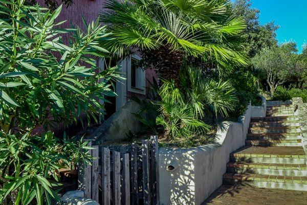 in the  #garden  of your  #flatinPortoCervo