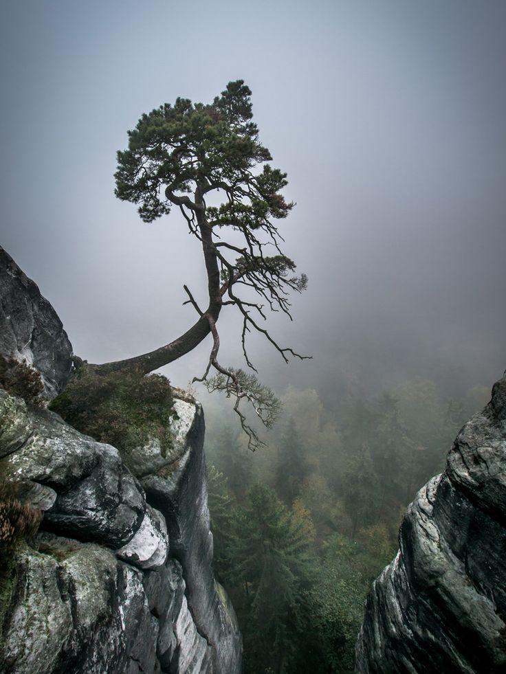 Пейзажи Андреаса Ваниша