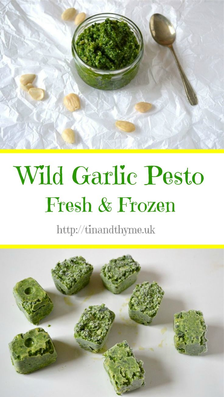 Wild Garlic Pesto Recipe and what to do with it. So versatile. Works with pasta, spread on bread and can be frozen for using when the wild garlic season is long past.