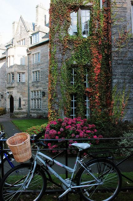 Scotland in fall (St. Andrews University)