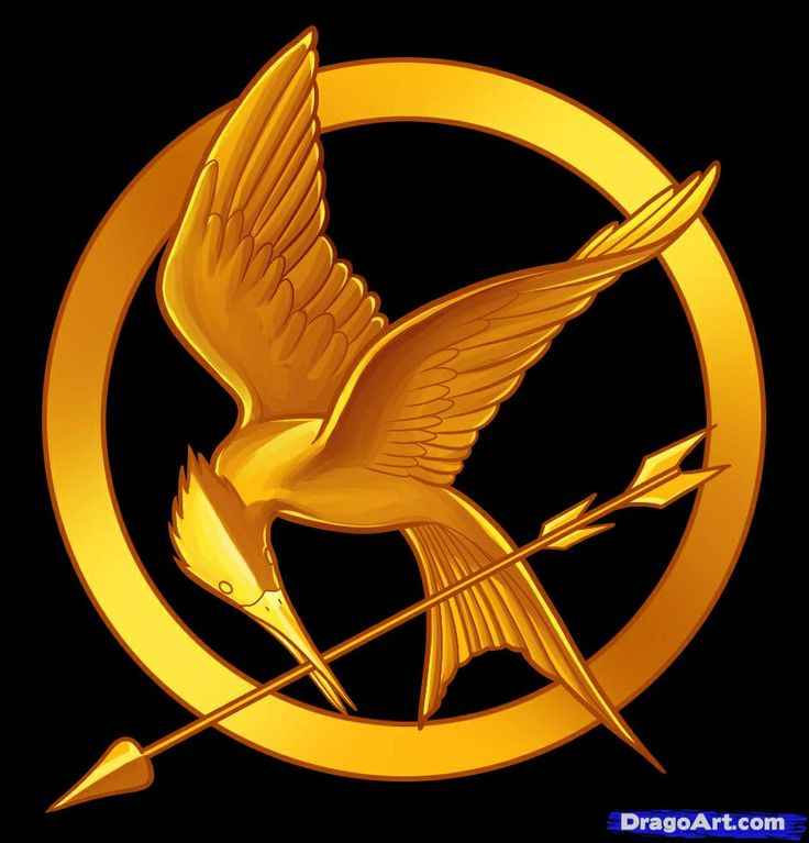 58 Best Hunger Games Images On Pinterest Hunger Games Catching