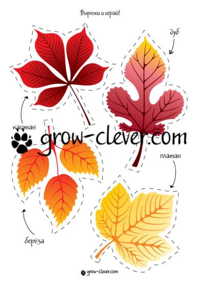 """Шаблон для игр, поделок и домашнего декора """"Осенние листья: береза, дуб, платан…"""