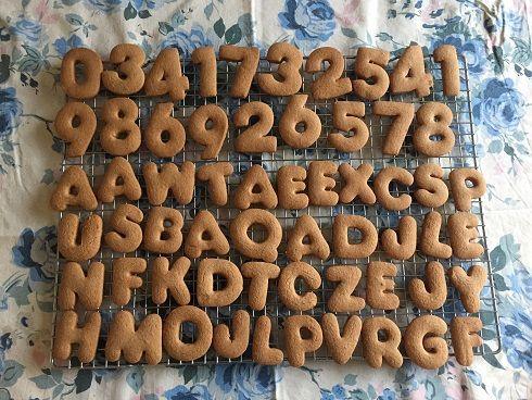 Glutenvrije gingerbread koekjes - Sophie Glutenvrij