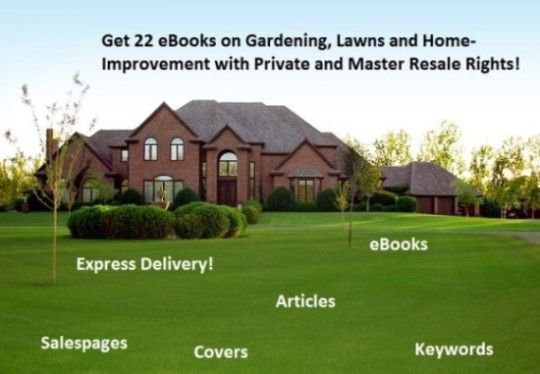 I will give you 22 #eBooks on #Gardening, #Lawns and #HomeImprovement with #Private and #MasterResaleRights for only $5. Check out the offer for more details here: http://digesale.com/jobs/ebooks-reports/i-will-give-you-22-ebooks-on-gardening-lawns-and-home-improvement-with-private-and-master-resale-rights/