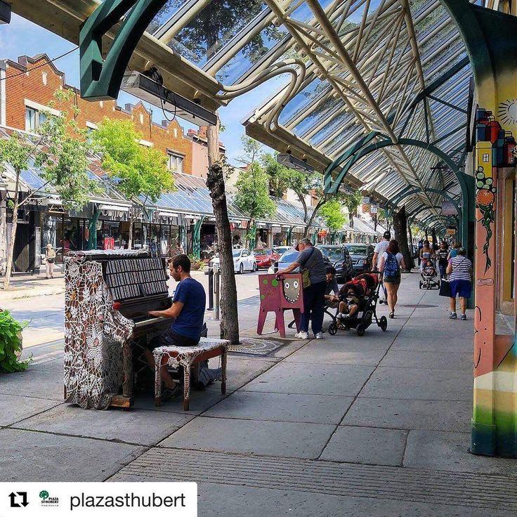 113 mentions J'aime, 0 commentaires - Rosemont-La Petite-Patrie (@arr_rosemontpp) sur Instagram