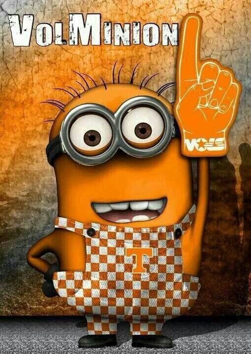 7ad6aa7f451533d5551345939aec2724 orange country go vols 76 best clemson tennessee images on pinterest collage football