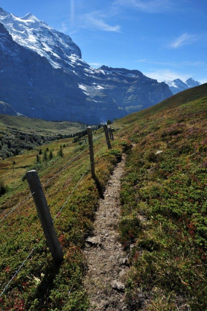 Hiking the Water Trail of Nendaz http://thingstodo.viator.com/switzerland/hiking-the-water-trail-of-nendaz/