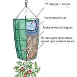 Мобильный LiveInternet Вертикальный огород | ЗАГОРОДНАЯ_ЖИЗНЬ - Дача, сад и огород круглый год! |
