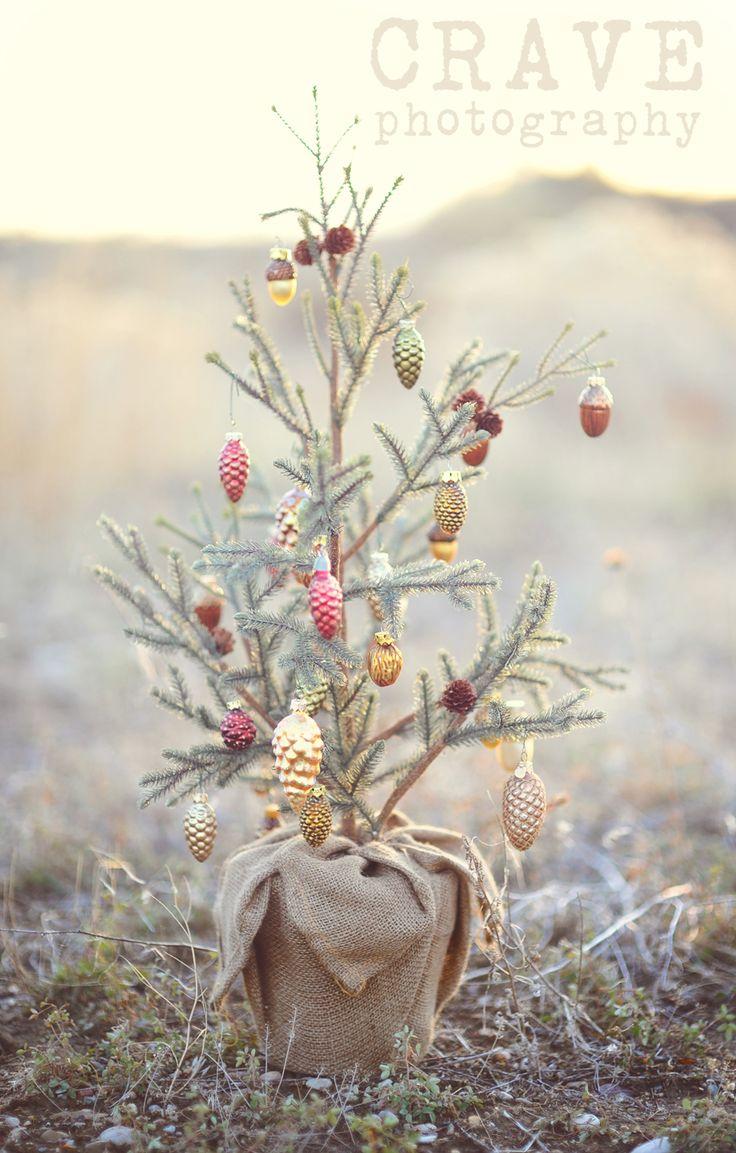 vintage christmas treeCharli Brown Christmas, Holiday, Charlie Brown Christmas, Xmas Trees, Pine Cones, Country Christmas, Burlap Trees, Christmas Trees, Outdoor Christmas
