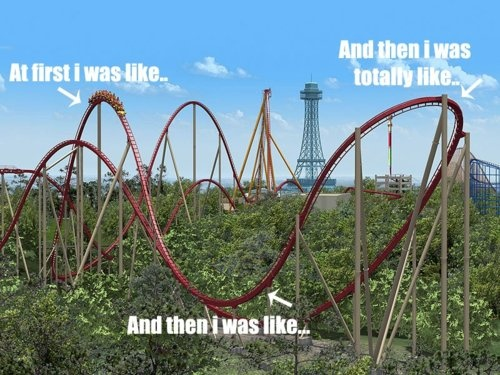 Type 1 Diabetes Memes  Rollercoaster effect - Been there done that!  :)