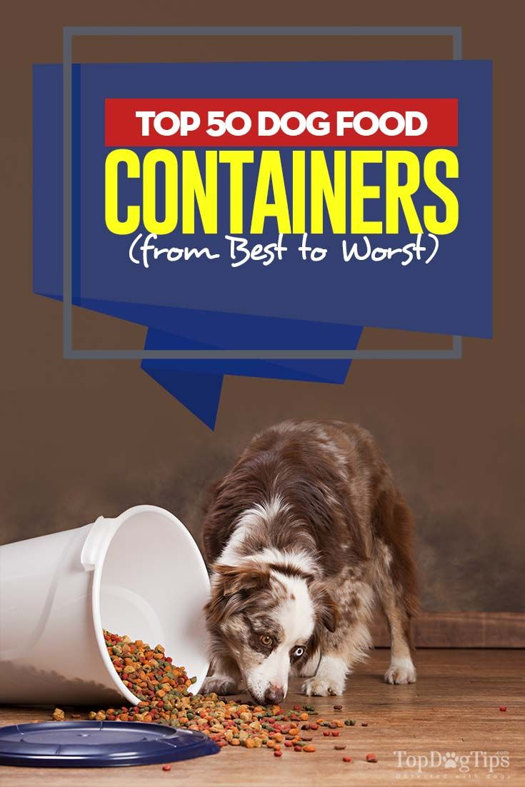 Top 50 Best Dog Food Containers Pet Food Storage Best Dog Food