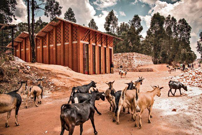 Library of Muyinga