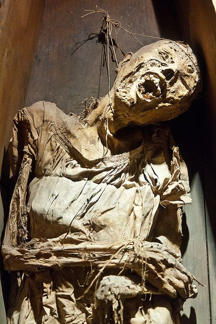 The Guanajuato mummies were discovered in the cemetery of Guanajuato, a city northwest of Mexico City. It turned out that the combination of area's dry atmosphere and the mineral content of the soil preserves and naturally mummifies bodies, a process which only takes 5 or 6 years.