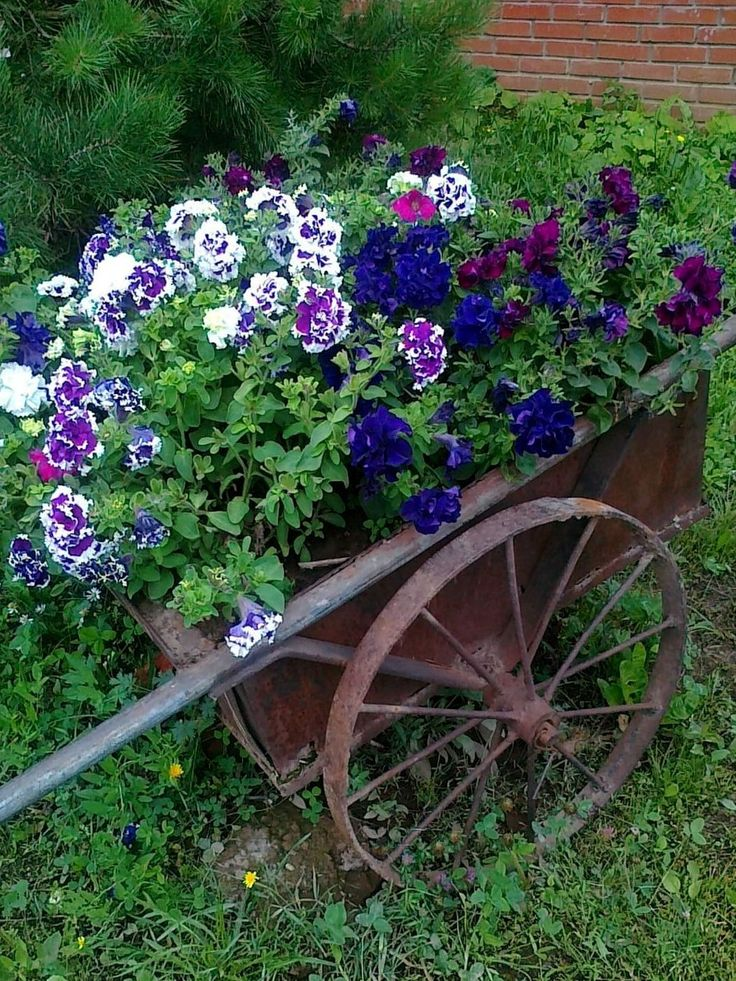 Flower Garden Ideas With Old Wheelbarrow 23 best carretilla con flores images on pinterest | flowers