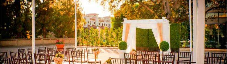 Sheraton Pasadena Hotel, Outdoor Ceremony Site. Love the Morton Bay Fig tree they use as the backdrop and the way the arbor was decorated.