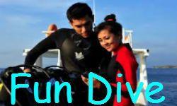 Fun Dive at Gili Trawangan