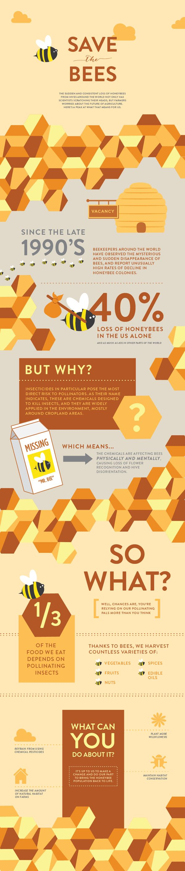 Save the bees. Save the future of agriculture. #infographic #design (View more at www.aldenchong.com)