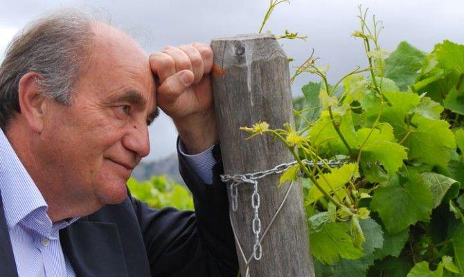 Diodato Buonora News · Pagano, nel mio vino il profumo del Cilento. Giovani, il futuro dell'agricoltura è qui