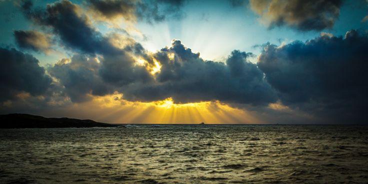 Sunrays -