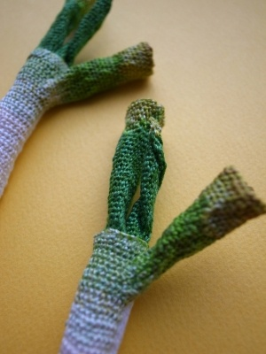 Leeks by HIPOTA